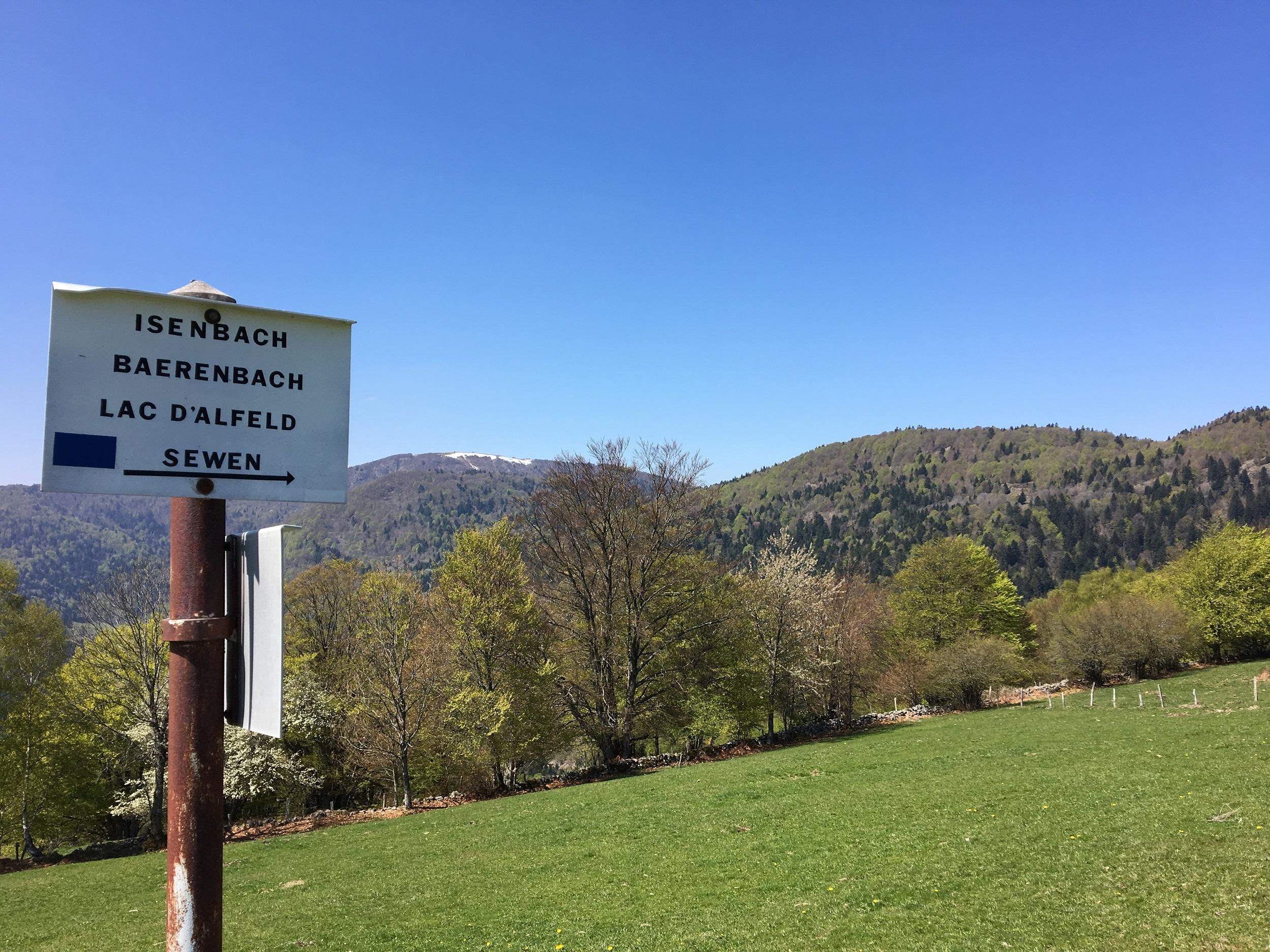 Le massif du Ballon d'Alsace dispose d'atouts, comme la randonnée, que les présidents des départements du Territoire de Belfort et du Haut-Rhin veulent mettre en valeur à l'avenir. (Photo Pierre-Yves Ratti)