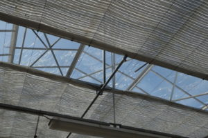 La toiture en verre armé des serres en verre n'ont pas résisté.