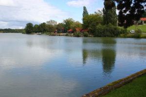 La digue de l'étang des Forges va être restaurée. Elle ne change pas de place. À terme, la route qui longe ce côté de l'étang, entre l'étang et l'ancienne laiterie, sera supprimée.