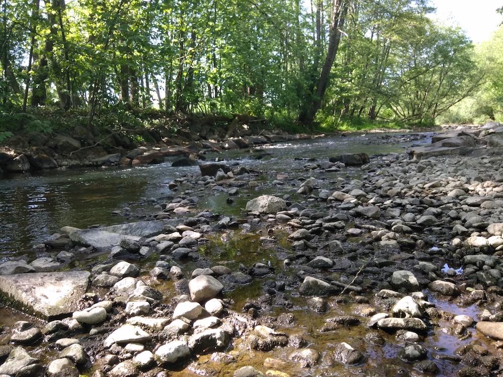Les faibles précipitations entraînent une baisse des débits des rivières. On évoque une sécheresse printanière.