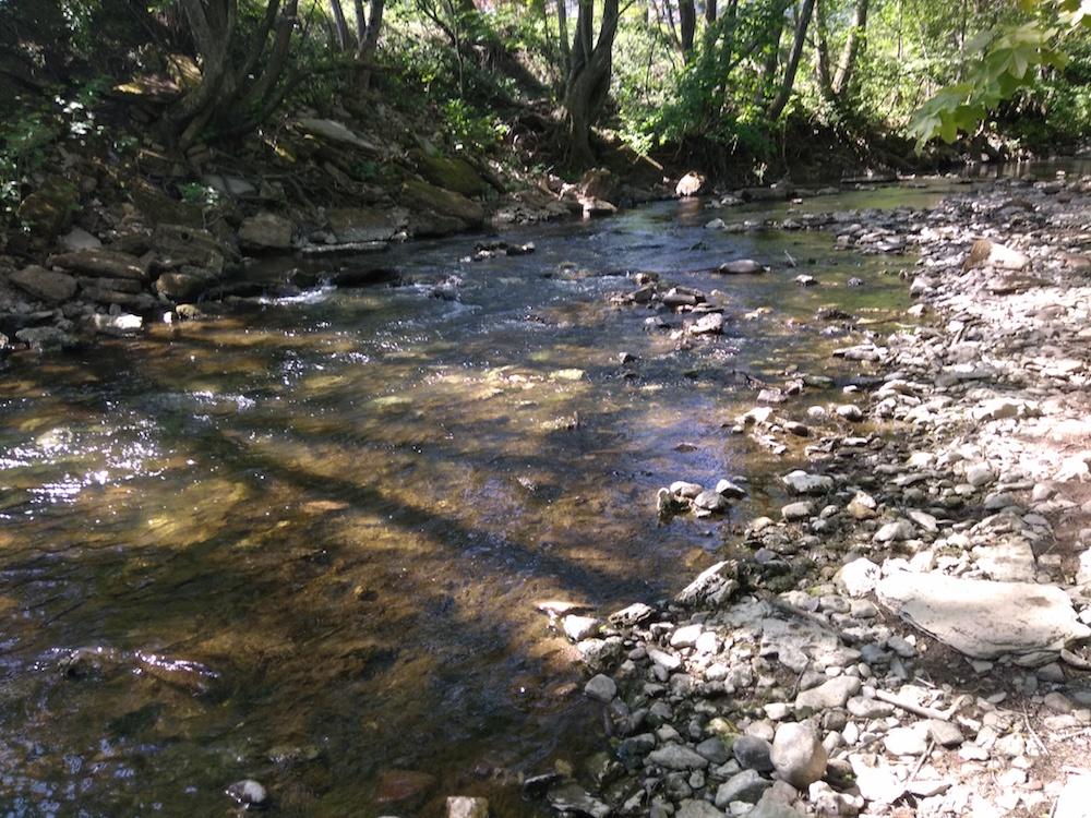 Quelques jours après la préfecture du Doubs, la préfecture de Haute-Saône publie un arrêté restreignant les usages de l'eau. C'est le niveau 1, alerte Sécheresse.