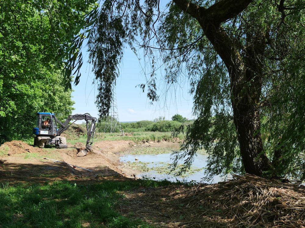 Aménagement écolo à l'étang du Ruderop à Bethoncourt (PMA)