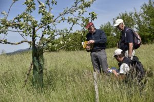 - 1er prix d'excellence agro-écologique : Nicolas Seidel (EARL Seidel) à Evette-Salbert ;
