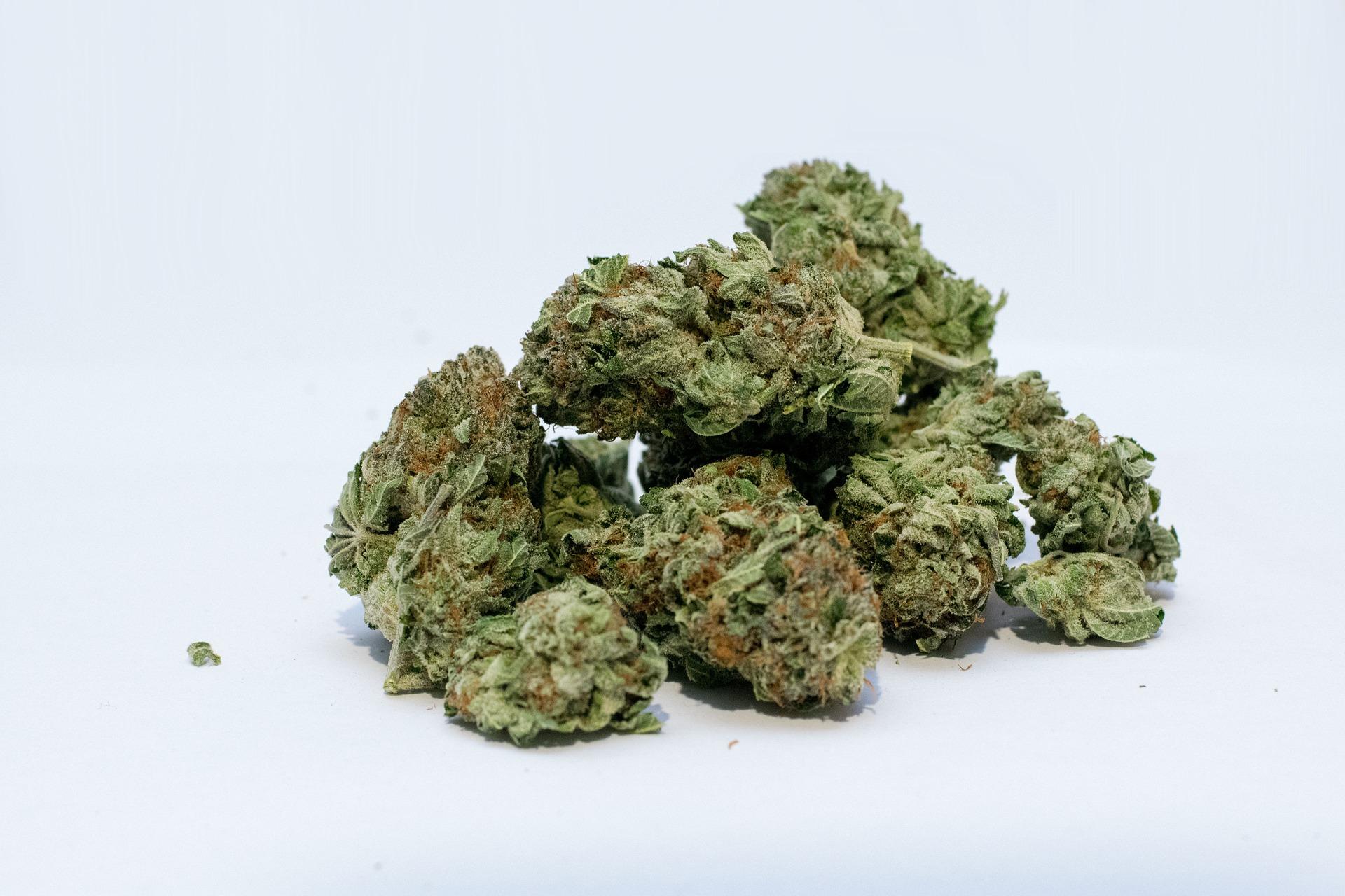 Une cargaison d'une tonne de cannabis a été saisie près de Besançon. Image par John Miller de Pixabay