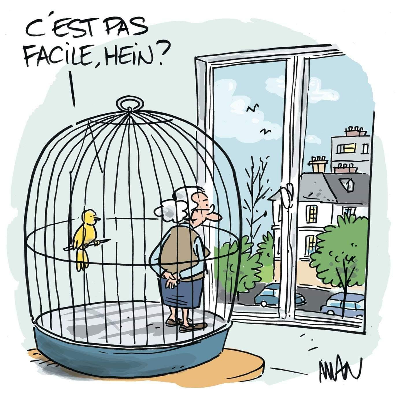 Dessin abordant le confinement et les animaux (Manuel Lapert)