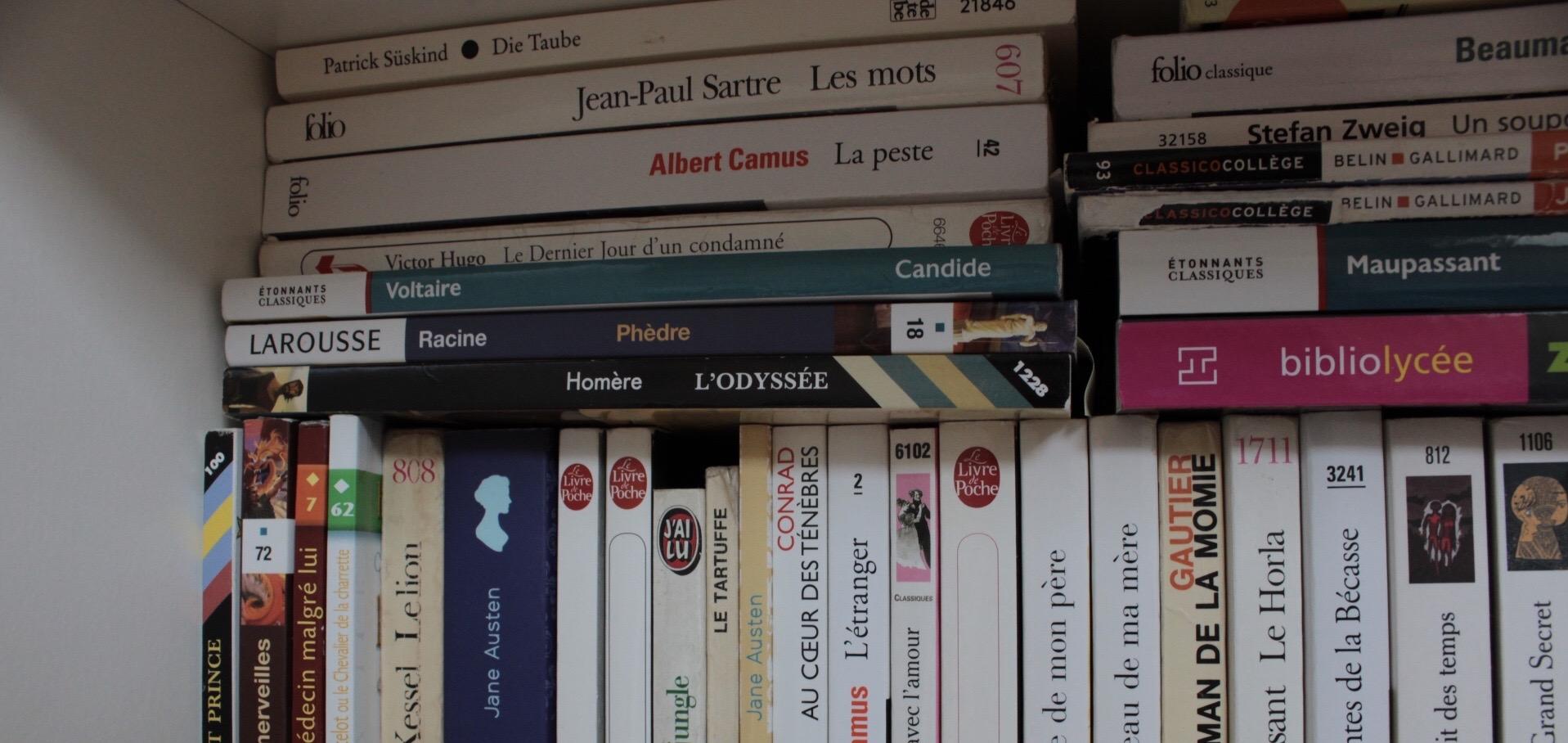 Bibliothèque Julie