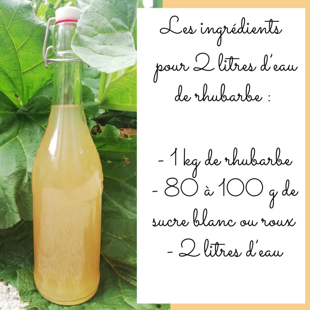 Recette pour confectionner de l'eau de rhubarbe, par Fleur, pour le blog l'An vert.