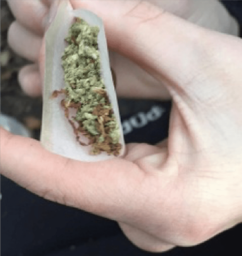 cannabis (lycée diderot)