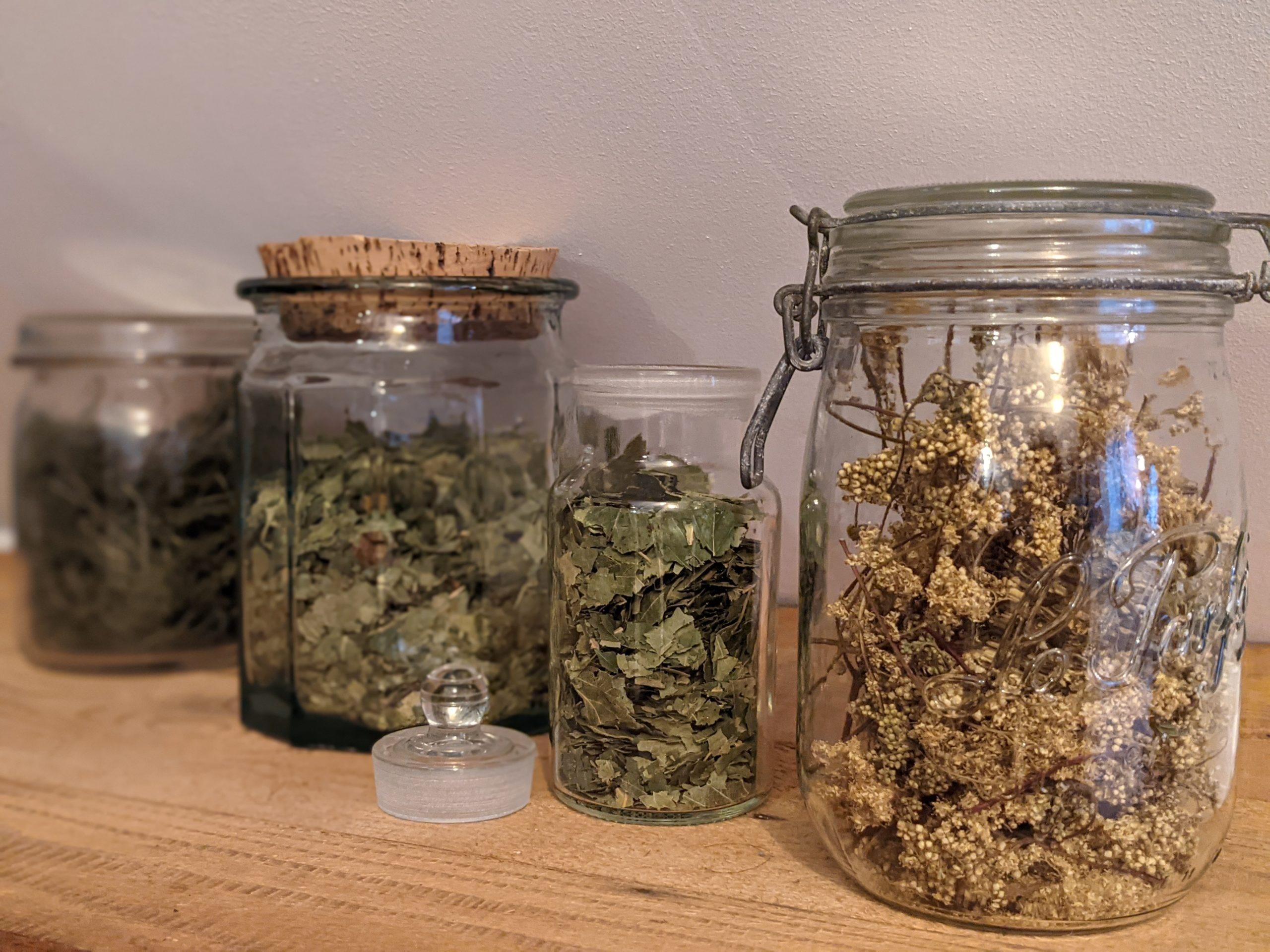 conserver plantes aromatique (fleur)