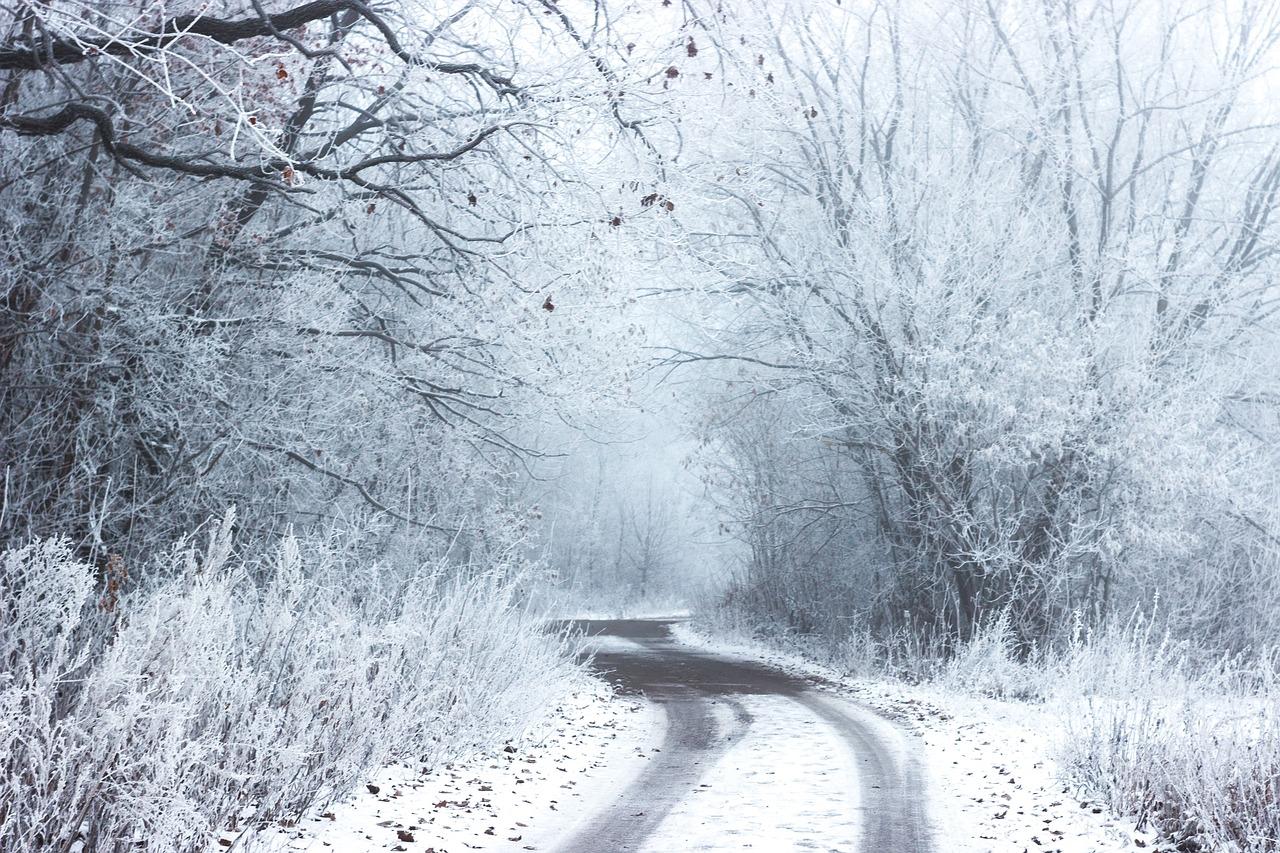 route neige (StockSnap de Pixabay)